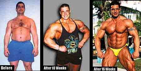 muscle memory transformation