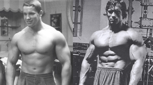 dianabol before after