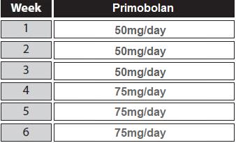 primobolan cycle for women