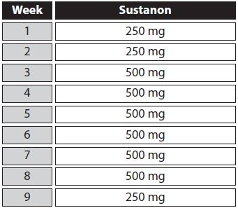 intermediate sustanon 250 cycle