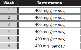 testosterone undecanoate cycle