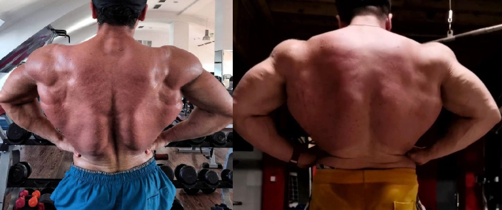 sarms to steroids before and after